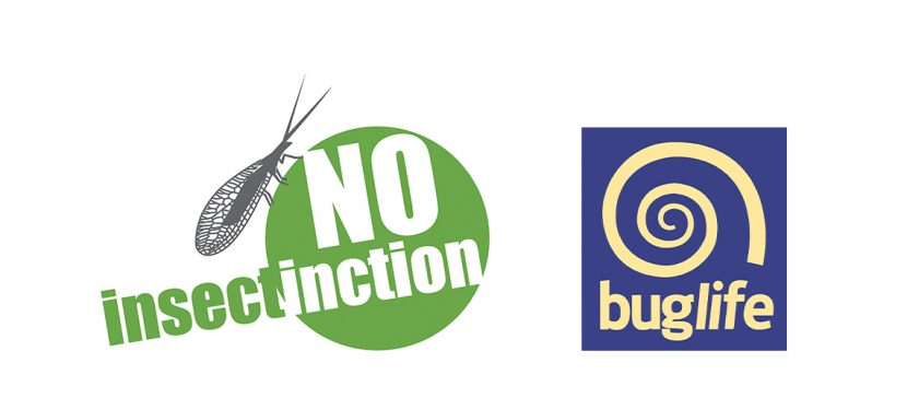 Buglife Noinsectinction Campaign